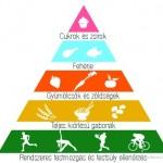 gnld-egeszseg-piramis
